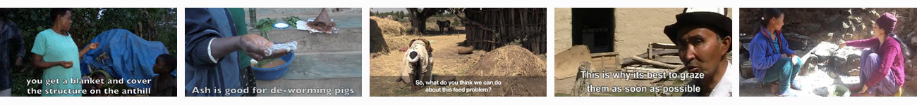 Playlist of Participatory Videos by farmers around the world