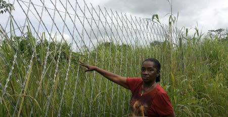 Land corruption in Sierra Leone: A diamond mine has gradually invaded property.